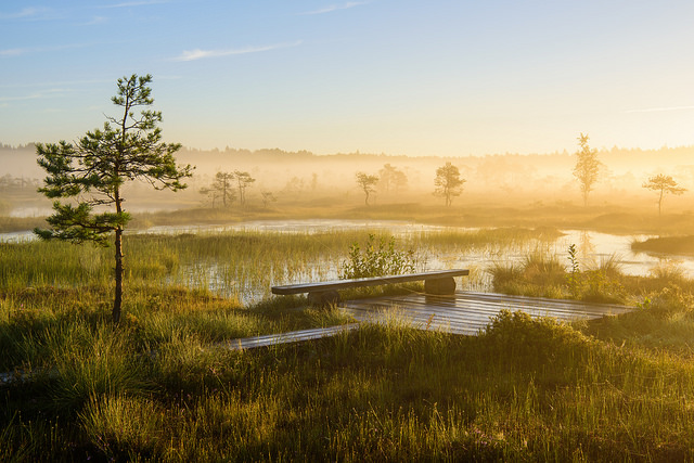 Soomaa National Park one of the best things to do in estonia outdoors