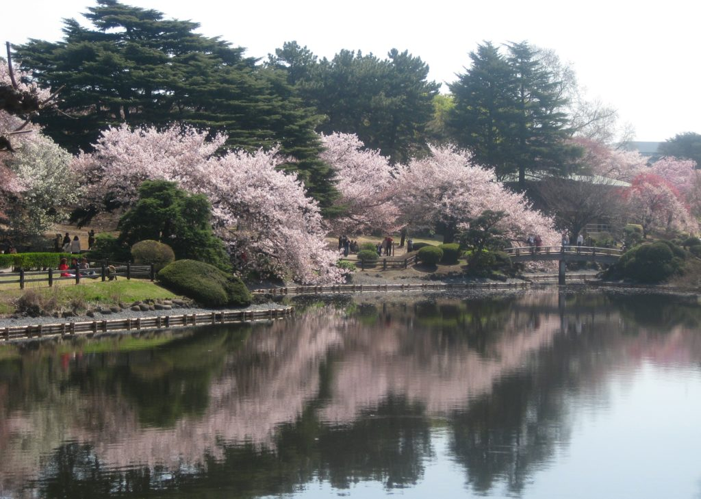 visit a park during your three days in tokyo Japan